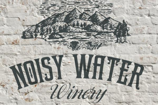 Noisy Water Logo